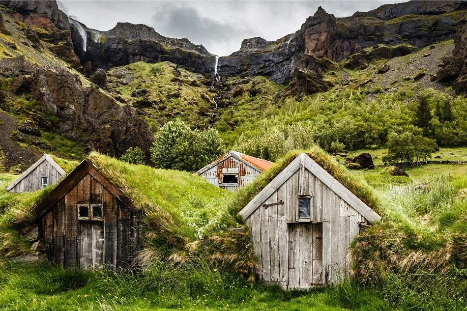 small wooden houses with moss rooftop in Iceland