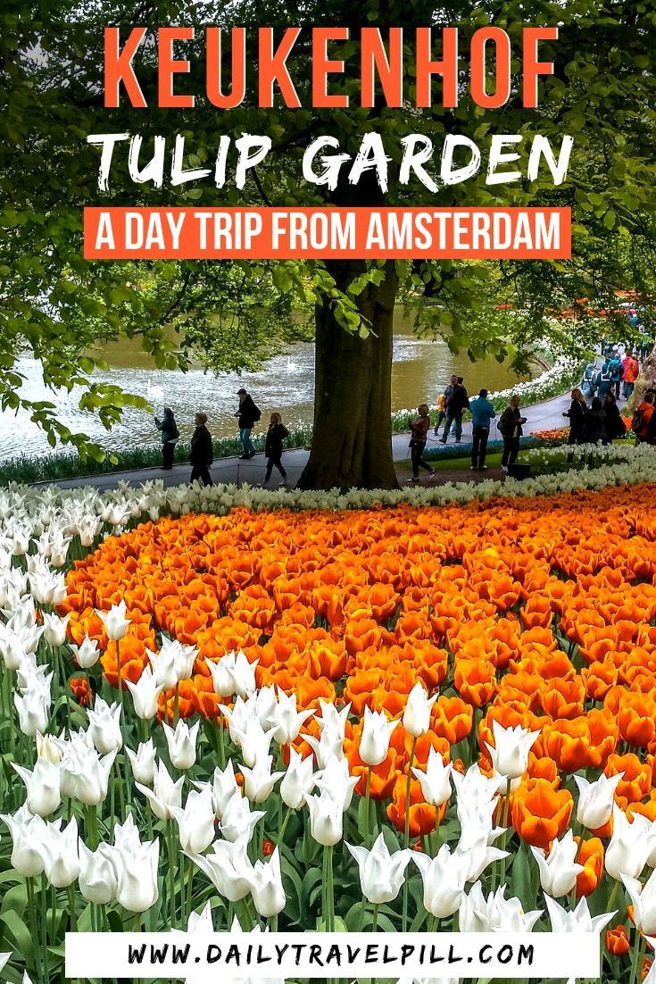 Day trip to Keukenhof, Netherlands