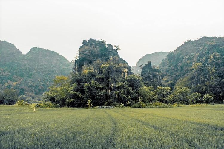 Ninh Binh rice fields - road to Thai Vi Temple