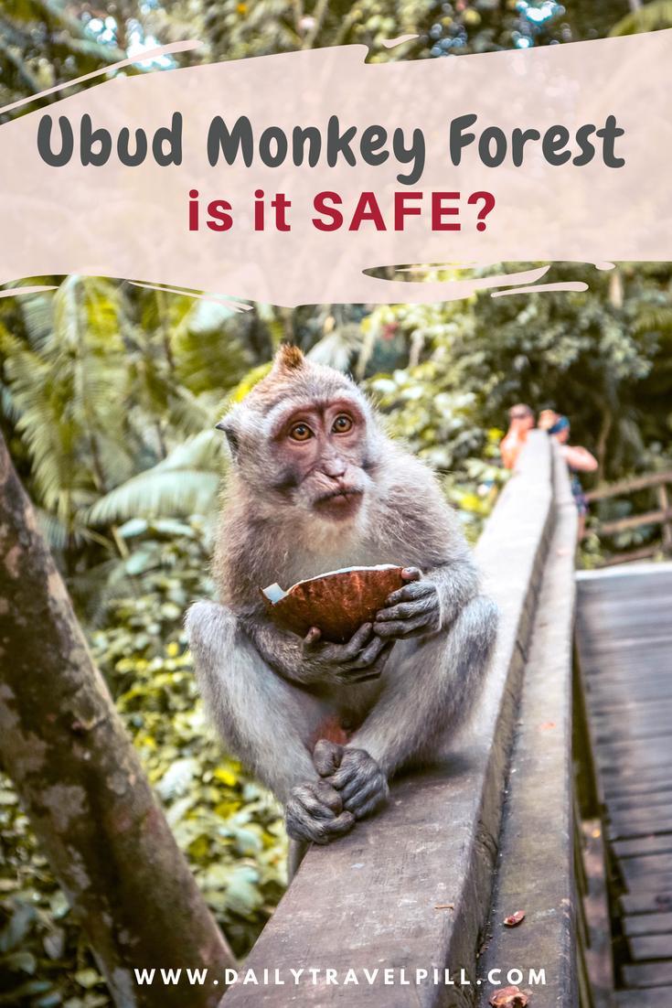is it safe to visit Sacred Monkey Forest Sanctuary Ubud, Bali