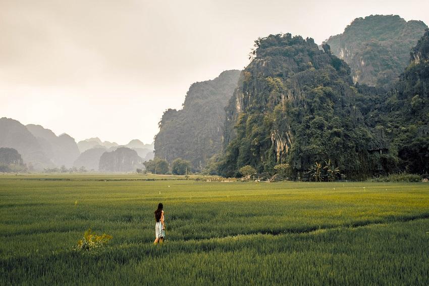 Ninh Binh rice fields and limestone mountains
