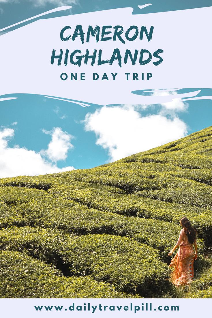 Cameron Highlands one day trip