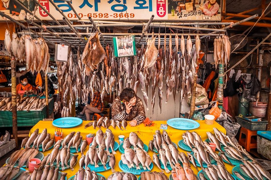 Stalls at Busan Jagalchi Fish Market