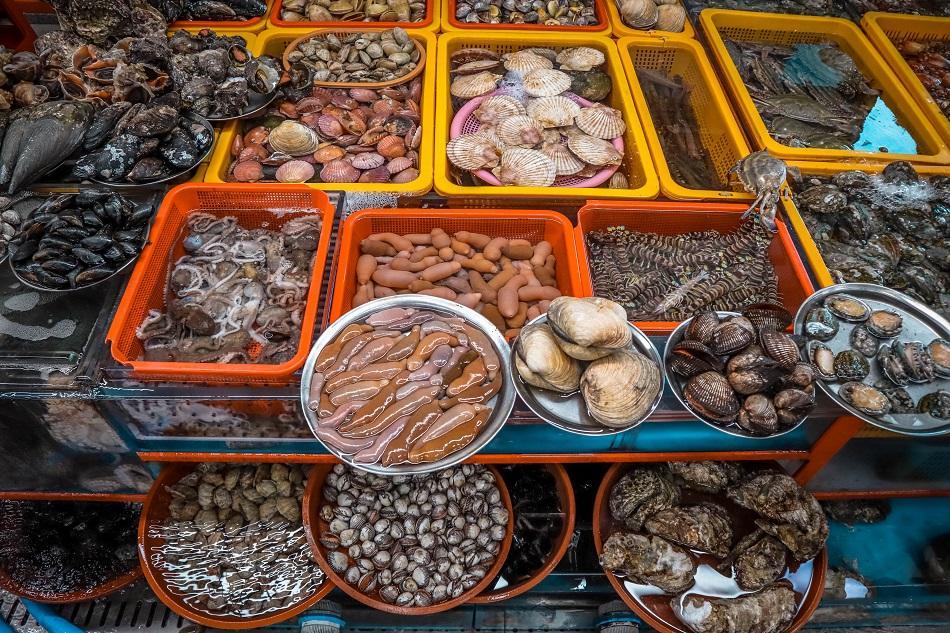 Displayed fish at Busan Jagalchi Fish Market