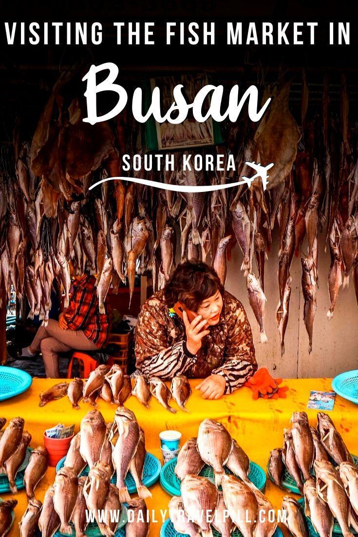 Jagalchi Fish Market Busan, South Korea
