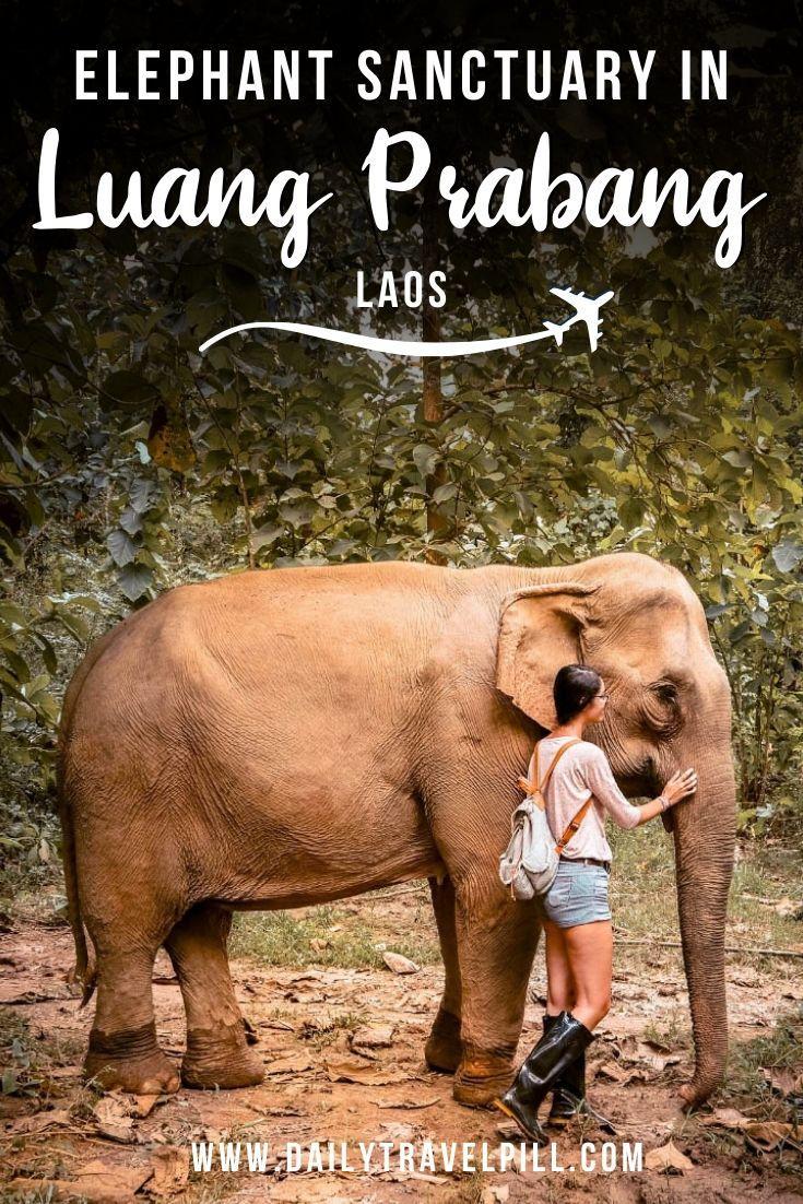 Mandalao ethical elephant sanctuary in Luang Prabang, Laos