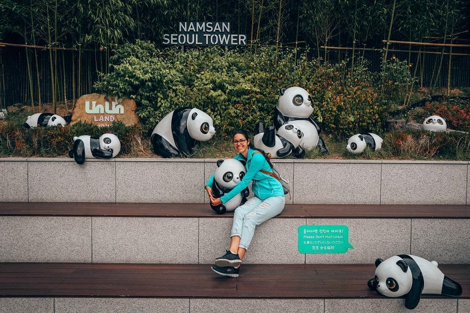 N Seoul Tower pandas