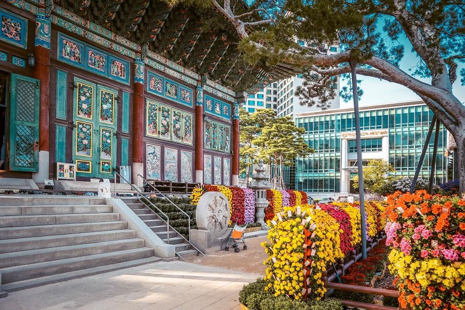 Yogyesa Temple front flowers, Seoul