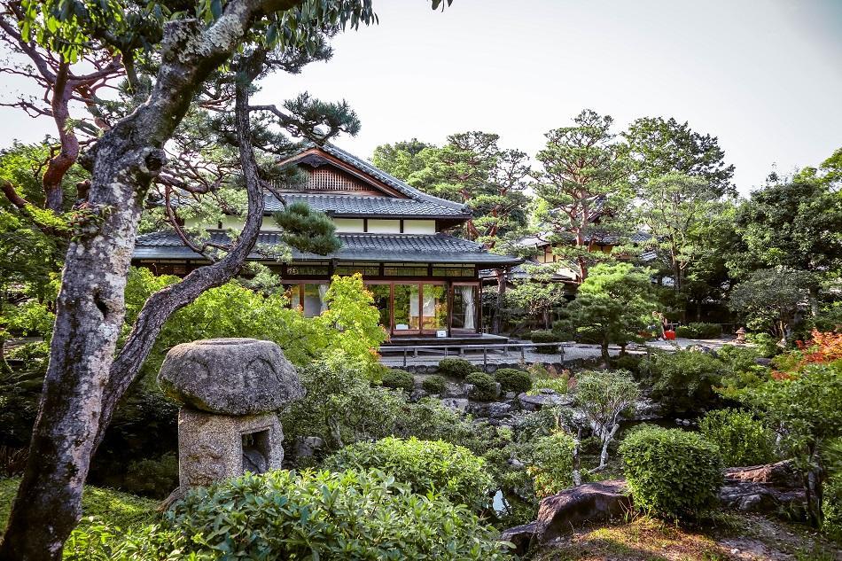 Japanese garden at Nara Park, Japan