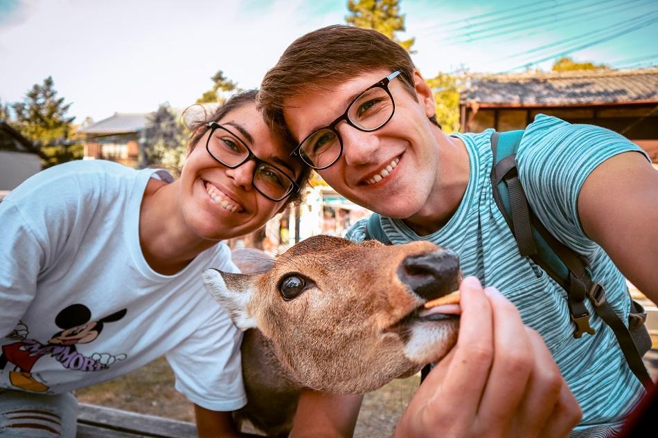 Cute deer selfie at Nara Park, Japan