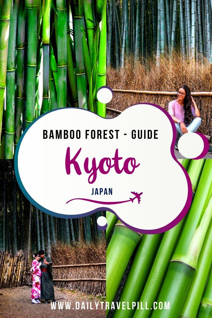 Arashiyama Bamboo Forest Kyoto - what you need to know