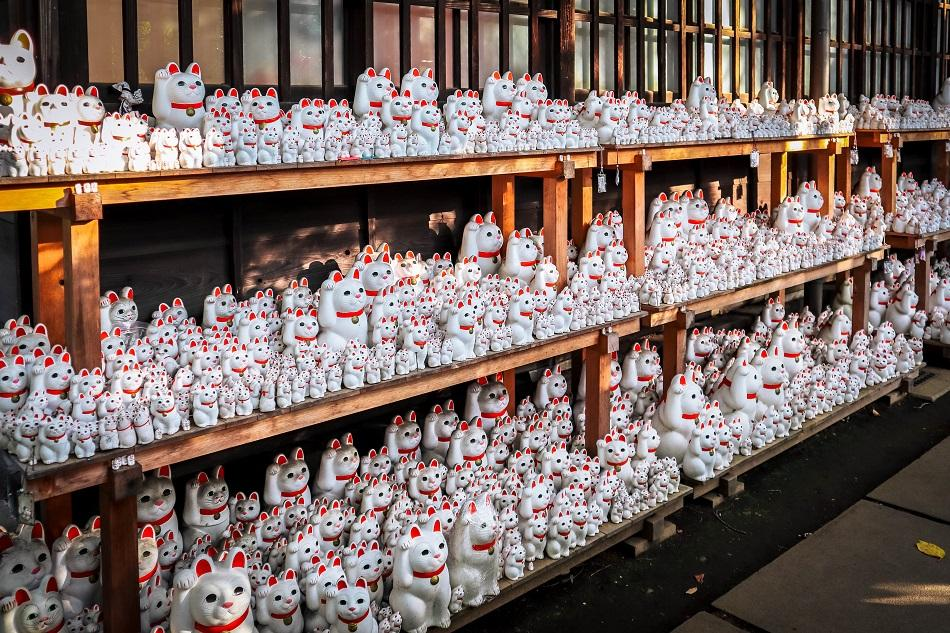Lucky Cat Temple Tokyo