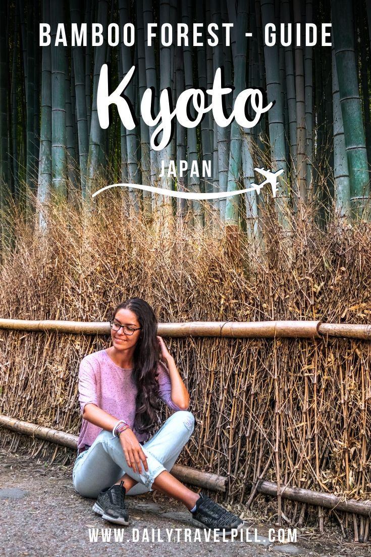 Arashiyama Bamboo Forest Kyoto - what you need to know