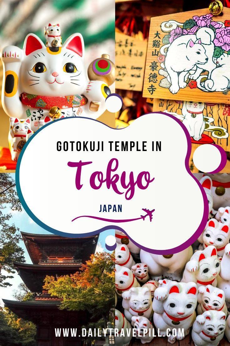 Tokyo Cat Shrine - Gotokuji Temple