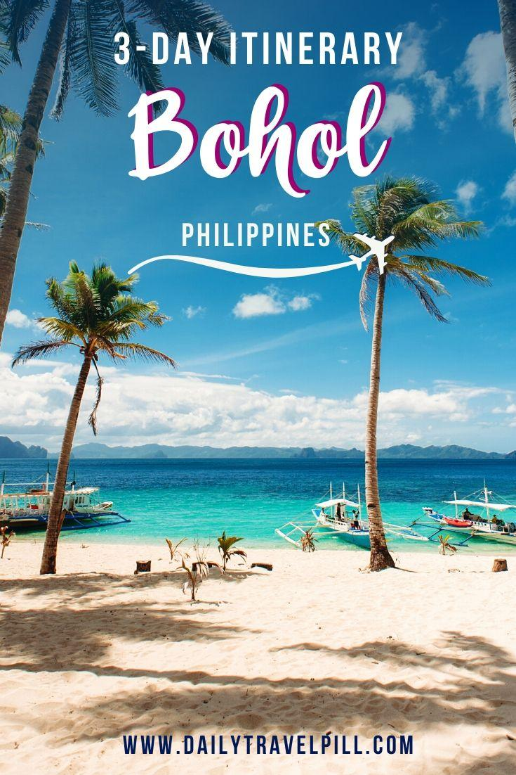 a beach with palm trees in Bohol, Philippines