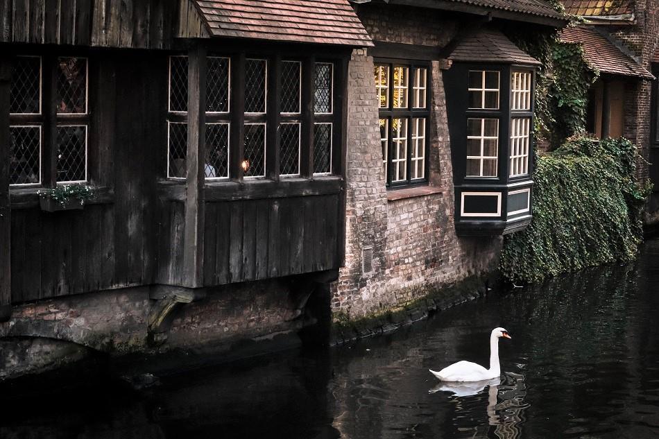 View from Bonifacius Bridge Bruges