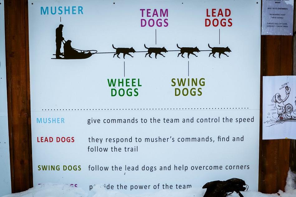Husky safari guidelines