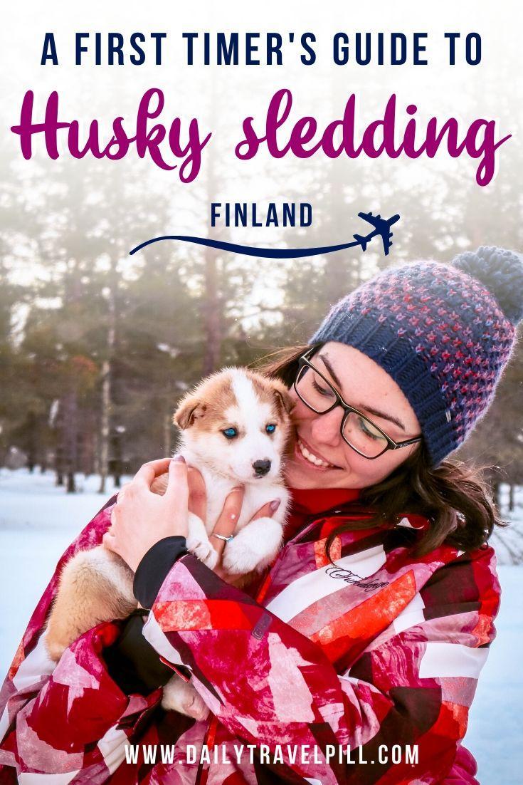 Husky dog sledding Lapland, Finland