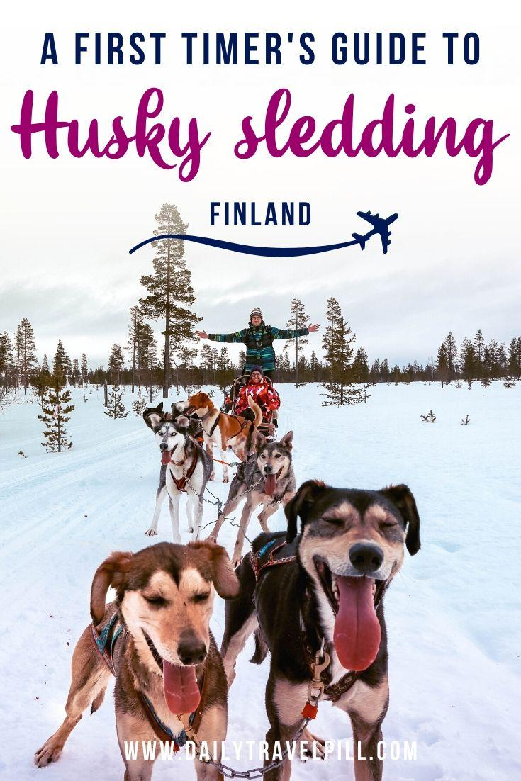 Husky dog sledding Lapland, Finland