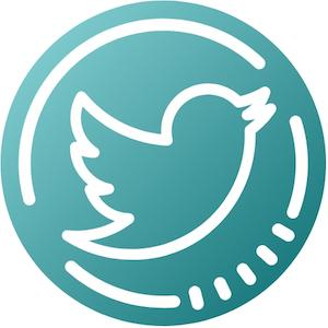 Twitter Follow Icon