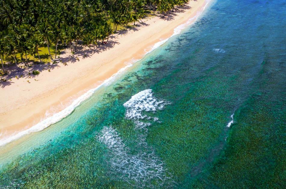 Pacifico Beach Siargao drone view. Palm trees near Pacifico Beach Resort in Siargao, Philippines