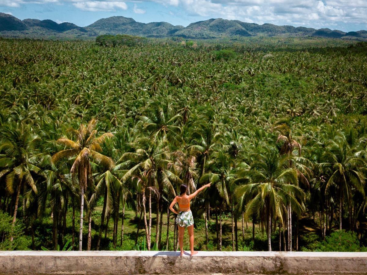 Aurelia Teslaru at Palm Tree viewpoint Siargao