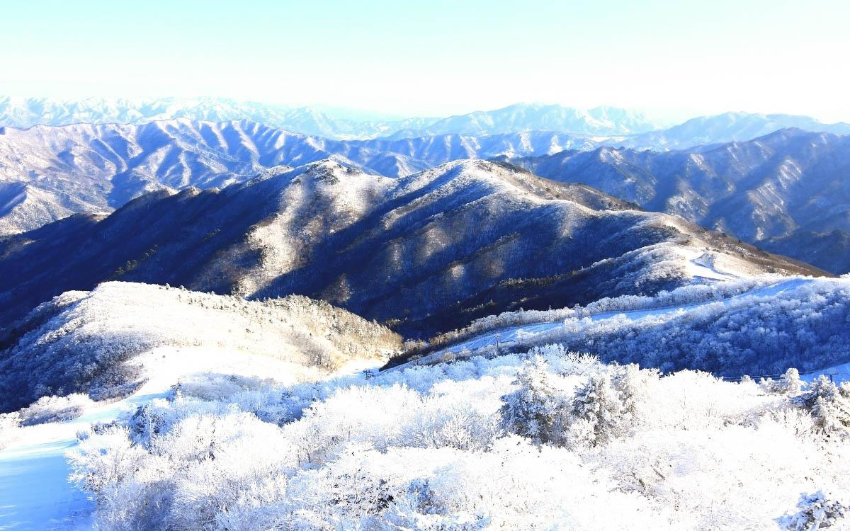 Hallasan Mountain in winter covered in snow - things to do in South Korea in winter, South Korea winter activities, visiting South Korea in winter