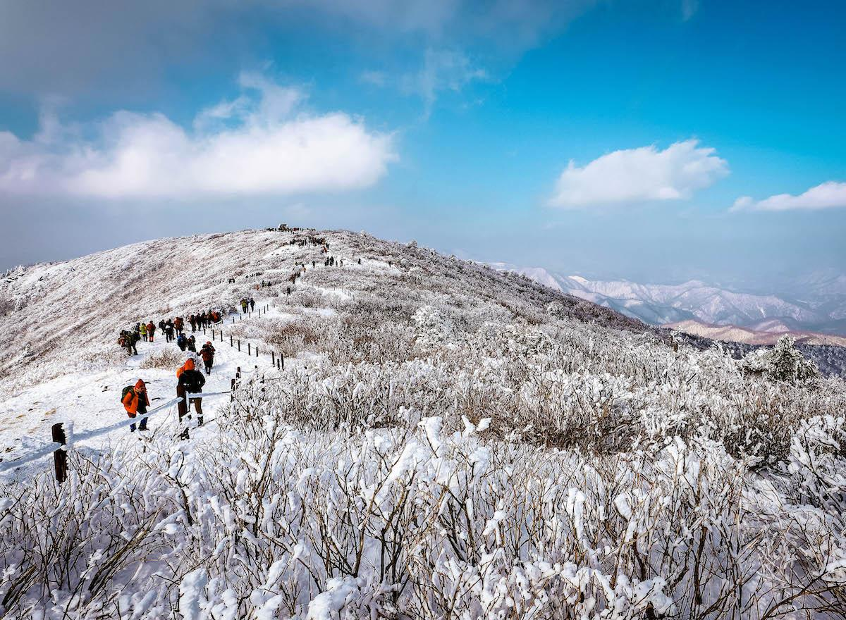 Hiking Taebaeksan Mountain in South Korea in winter - things to do in Korea in Winter, winter destinations in Korea, winter activities in South Korea