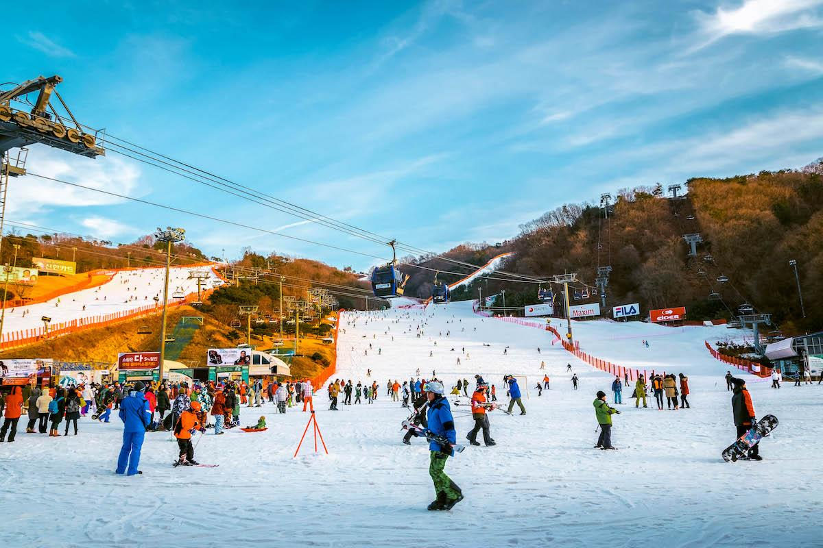 Vivaldi Park Ski World in winter. People skiing on ski slopes - - things to do in Korea in Winter, winter destinations in Korea, winter activities in South Korea